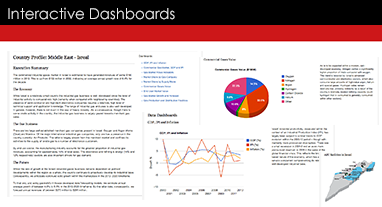 Business+intelligence+dashboard