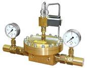 WITT-elec-valve-gas_world